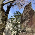 斎藤道三と信長が会見!一宮市冨田の聖徳寺跡