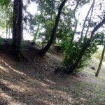 織田有楽斎ゆかりの城!知多市大草城は遺構が良く残っています