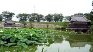 信長暗殺計画!大蛇探しの逸話と名古屋市西区に残る佐々成政の比良城跡